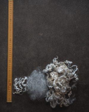 Filtmakeriets Leicester Naturvit 100 % svensk fårull Ullstapel och tesad ull