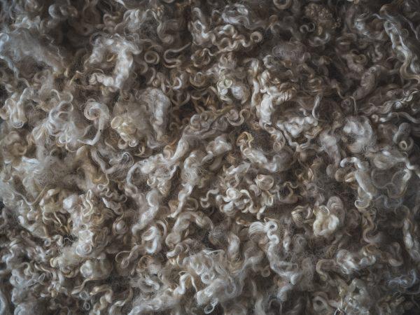 Filtmakeriets Leicester Naturvit 100 % svensk fårull